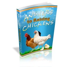raising chickens big Chicken Coop Plans for Christmas